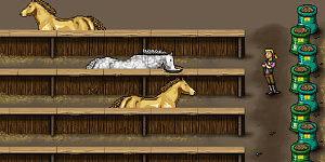 Hra - Nakrm koníčky
