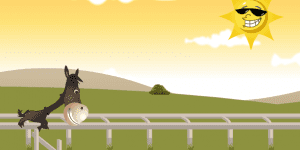 Hra - Horsey Run Run