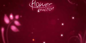 Hra - Flower Reaction