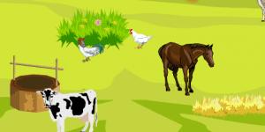 Farm Field Deco