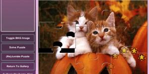 Puzzle s koťátky