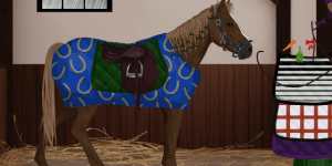 Hra - Pimp my Horse