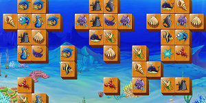 Marine life picture matching