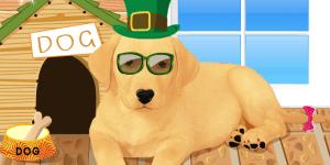 Labrador puppy dressup