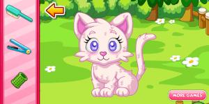 Pet Stars: Dazzling Kitty