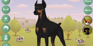 Hra - Tessa's Pets