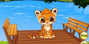 Pet Stars: Baby Tiger