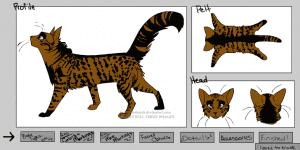 Create a Cat