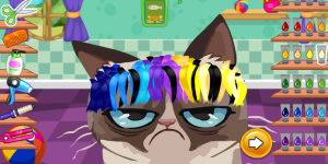 Hra - Angry Cat Hair Salon
