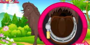 Horse Grooming 3