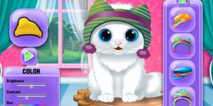 The Baby Kitten Care And Dressup