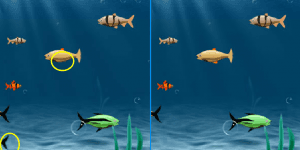 Fishing Difference