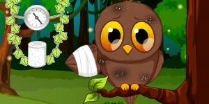 Pet Stars: Baby Owl