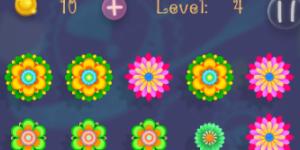 Flower Boom