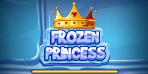 Hra - Frozen Princess Hidden Object