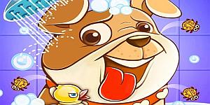 Hra - Animal Daycare