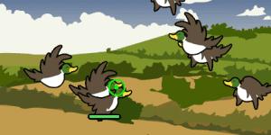 Hra - Bird Blast