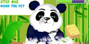 Hra - Panda Care