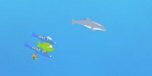 Dolphin Olympics 2