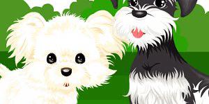 Hra - Pet Dressup 2
