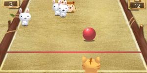 Hra - Kočičí bowling