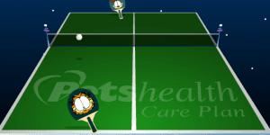 Hra - Garfield ping-pong