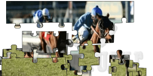 Hra - Horse Racing 1