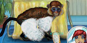 Hra - My Funny Monkey