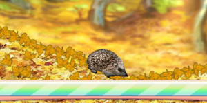 Hra - Forest Hedgehog