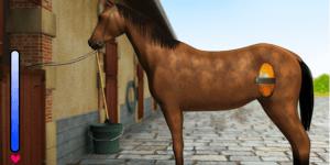 Horse Jumping 2
