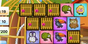 Bird Memo