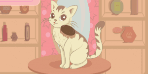 My Pretty Kitty Care