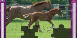 Jigsaw World Horses