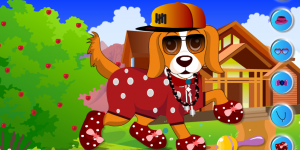 Funny Dog Dress Up