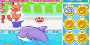 Hra - Dolphin Slacking