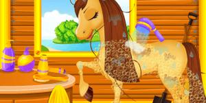 Hra - Belles Caring Horse