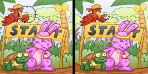 Hra - Bunny & Turtle