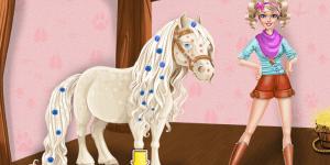 Hra - Magic Horse Caring